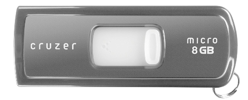 sandisk cruzer micro 7 Hi Speed and Professional Flash Drives for 2010